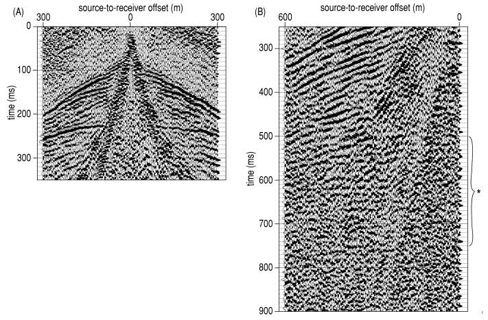two black and white displays of seismic data