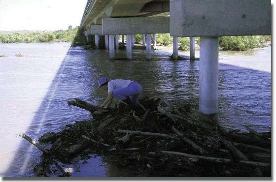 KGS--Upper Arkansas River Corridor Study--Arkansas River Water Quality