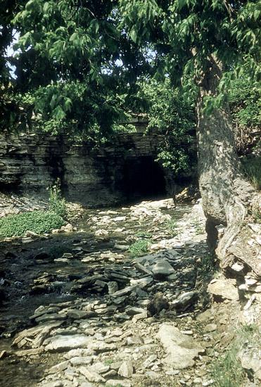 BU-Cave-Springs