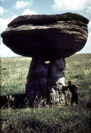 EW-Mushroom-Rock-1974