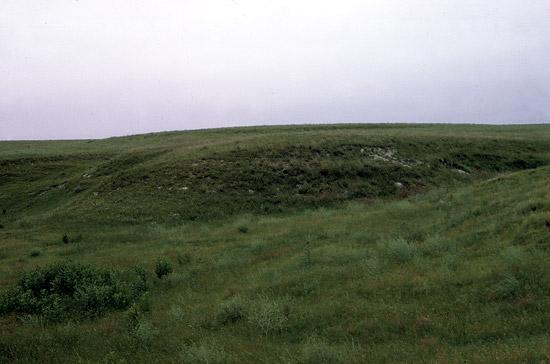GH-Pearlette-Ash-hills