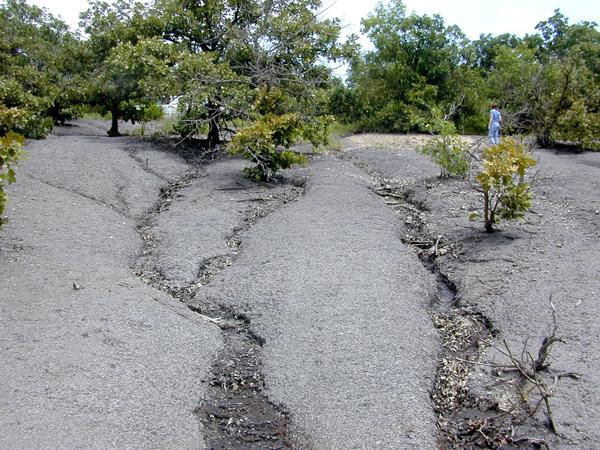 JW-Eroded-Blue-Hill-Shale