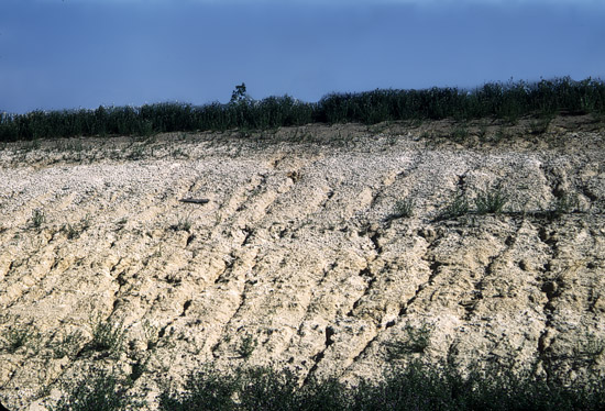 PR-Silty-Sand-over-Pearlete-Ash